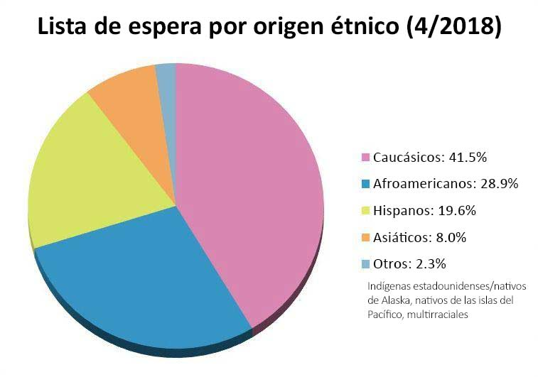 Lista de espera por (lowercase) etnia (1/2019):  caucásicos - 41%, afroamericanos - 28,8%, hispanos - 20%, asiáticos - 8,1%, otros - 2,4%